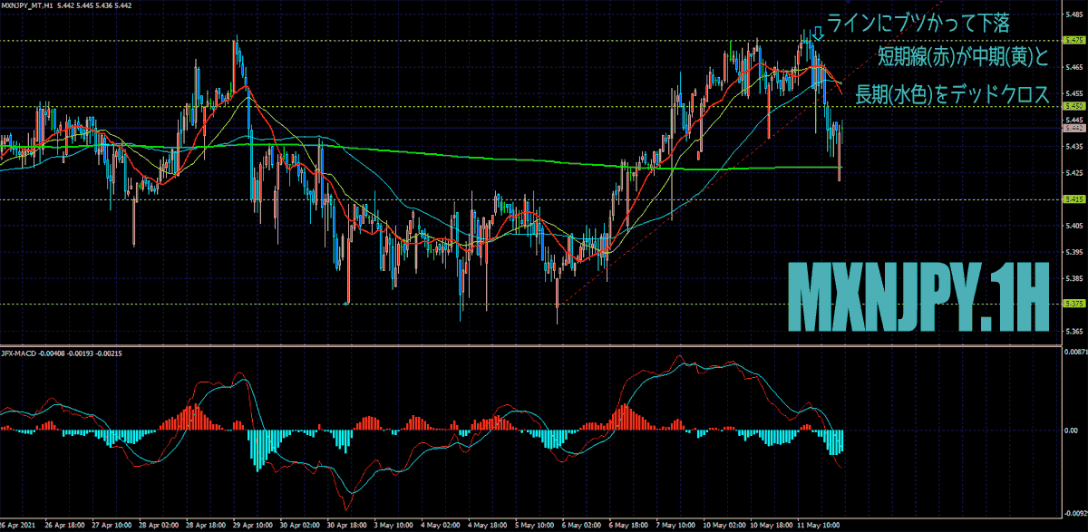 20210512_chart01